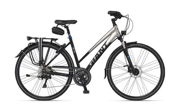 Giant® Touring Bike Lady Frame