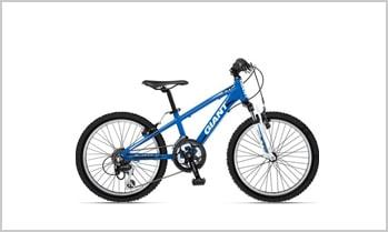 "Giant® Kids Mountain Bike wheel 20"" Blue Frame"