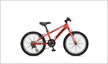 "Giant® Kids Mountain Bike wheel 20"" Red Frame"