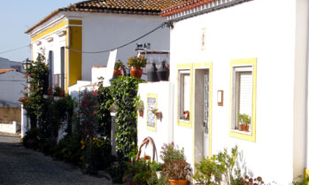 Traditional white washed houses with flower vases in Alentejo, Portugal