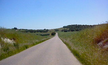 Road on a rolling hill in Alentejo, Portugal