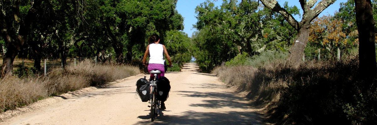 Cyclist riding on gravel road surrounded by cork trees in Alentejo, Portugal