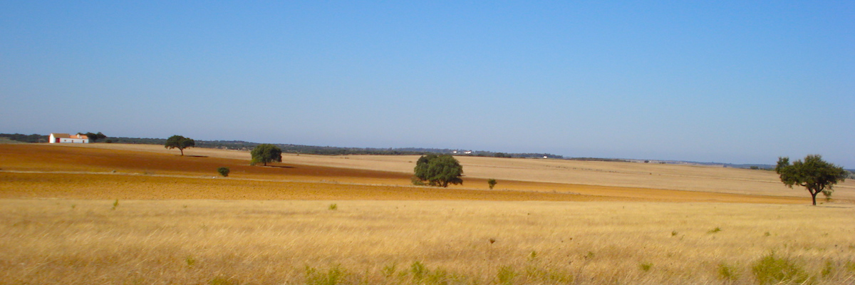 Cycling through Alentejo vast plains